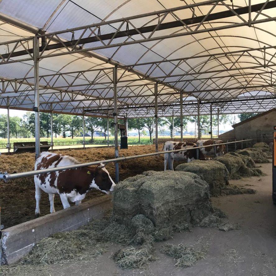 De Melkbrouwerij in Lettele