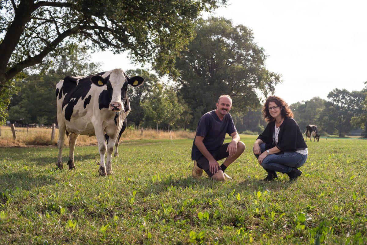 Biologisch melkveebedrijf en ijsboerderij de Meulenhorst